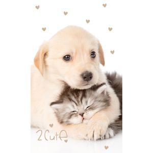 Kiscica és kiskutya gyermek törölköző, 30 x 50 cm