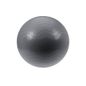 XQ Max segédeszköz edzéshez Yoga Ball, átmérő: 65 cm, ezüst